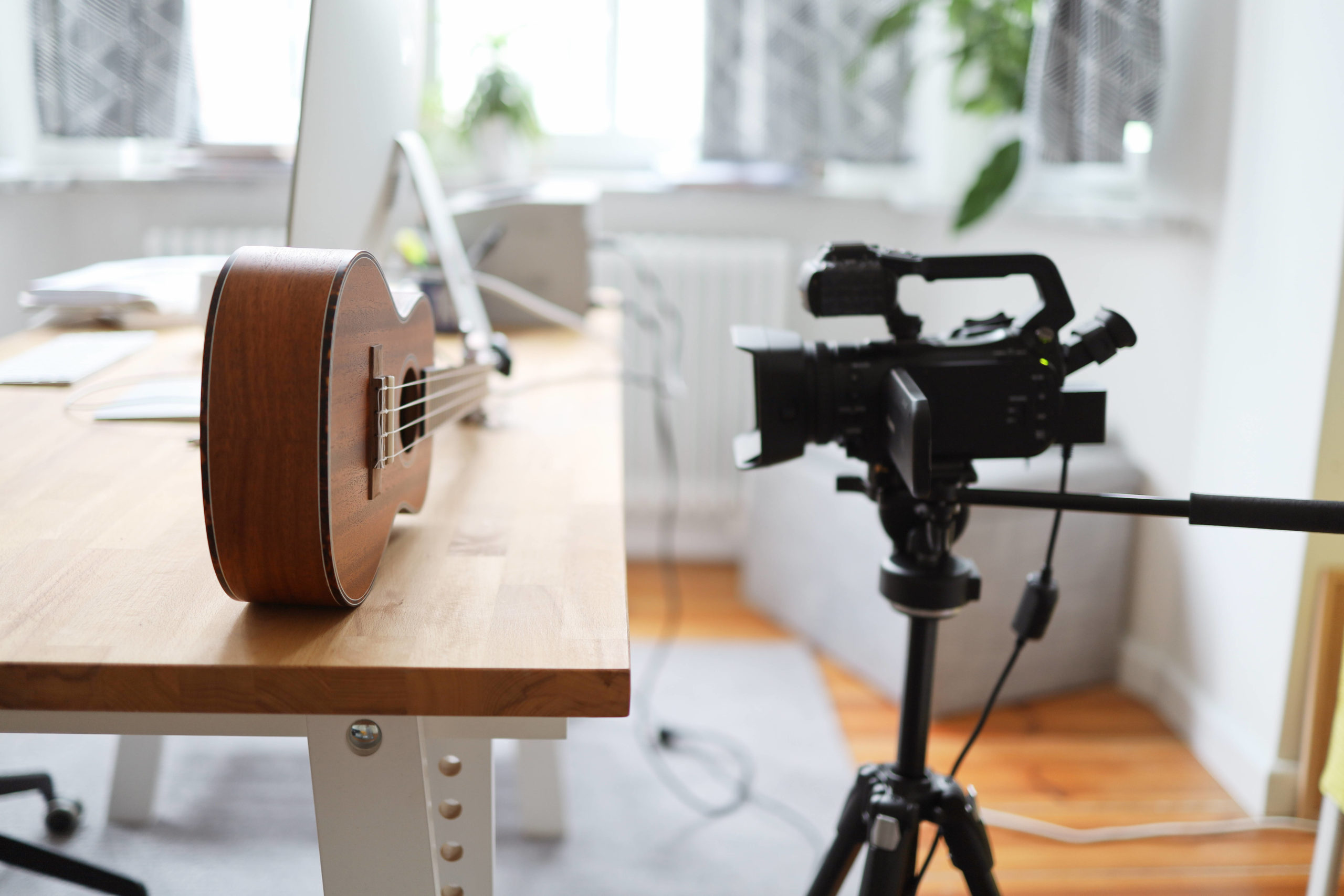 ukulele i kamera